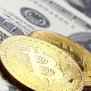 Bitcoin Versus Real Estate: Which Investment Is Better For You?