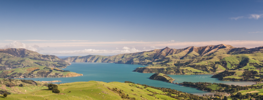 A tech executive fleeing to his New Zealand doomsday bunker reportedly forgot how to unlock it